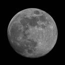 Full Moon,                                David Nguyen