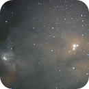 Rho Ophiucus Nebula Complex - NGC4604 and 4603,                                Tim Anderson