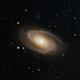M81 Cropped,                                Antonio G Flores