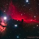 The Horsehead nebula,                                Fred Bagni