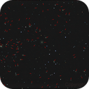 163 galaxies in a single frame *Abell 1656*,                                Dennys_T