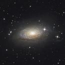 "M 63 - The Sunflower Galaxy,                                Sebastian ""BastiH..."