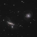 NGC 7769, 7770, & 7771,                                Gary Imm