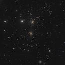The Coma Cluster  - Abell 1656,                                Dave Boddington