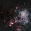 NGC2070 Tarantula,                                Gary Plummer