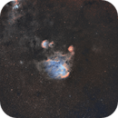 Running Chicken Nebula IC2944 Wide-field SHO,                                Tom Peter AKA Astrovetteman