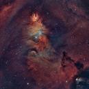 NGC 2264-la nébuleuse du cône HOO,                                astromat89
