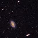 Galaxies in Ursa Major,                                Jose Tortola