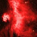 Seagull Nebula,                                Mark