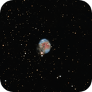 NGC 7008, the Fetus Nebula in HaOIII,                                Frank Zoltowski