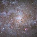 M33- Into the Core,                                Chris R White