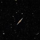 NGC 4565 - The Needle Galaxy,                                Ray Blais
