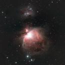 Great Orion Nebula (M42),                                dzambon