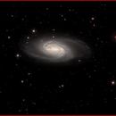 NGC2903 Galaxy,                                AlBroxton