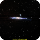 Whale Galaxy,                                jprejean