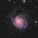 M 101 Pinwheel-Galaxy,                                CCDMike