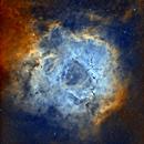 SH2-275 - Rosette Nebula,                                Elboubou