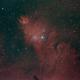 Cone Nebula,                                Ron Hunt