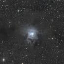 NGC7023: Iris Nebula,                                Vincelet Yannick