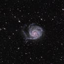 The Pinwheel Galaxy,                                Andrea Girones