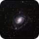 NGC 289,                                Roger Groom