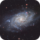 M33 - Triangulum Galaxy,                                Phil Brewer