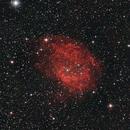 Sh2-261 - Lowers Nebula,                                D. Jung