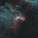 IC 5070 Pelican Nebula 20210528 11040s HOO 02.4.3,                                Allan Alaoui