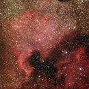 NGC 7000 & Pelican,                                Laurent Fournet