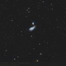 Cocoon Galaxy NGC 4490,                                pirx13