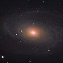 M81 - Bode's Galaxy,                                Łukasz Sujka