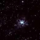 Tarantula Nebula,                                Ronald Piacenti Junior
