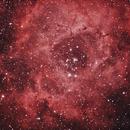 Rosette Nebula,                                aboy6