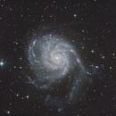 M101,                                Lewie