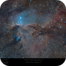 The Fighting Dragon Nebula (NGC 6188) of Ara,                                Paul Baker