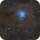 Iris Nebula,                                Donghun Kim