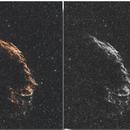 NGC 6992 EASTERN VEIL COLLAGE,                                ssprohar