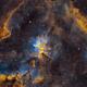 Heart Nebula,                                Steven Miller