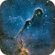 IC 1396,                                Eric Hahl