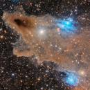 VDB 149 Shark Nebula,                                Giovanni Paglioli