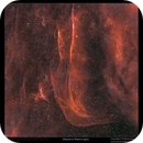 Filaments of Cygnus,                                Metsavainio