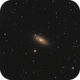 NGC 2841 The Tiger's Eye Galaxy,                                Barry Wilson