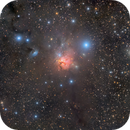 NGC 1579, The Trifid of the North,                                Eric Coles (coles44)