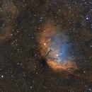 Sh2-101 Tulip Nebula,                                Paddy Gilliland