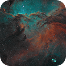 NGC6188 - The Fighting Dragons of Ara SHO,                                Patrick Dufour