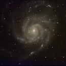 M 101,                                Robin Clark - EAA imager