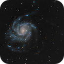 M101,                                Carlo Caligiuri