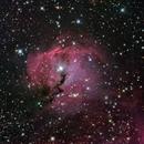 Seagull Nebula IC2177,                                bigeastro