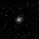 M101,                                Jeff Marston