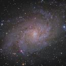 Triangulum Galaxy - M33,                                Rogerio Alonso